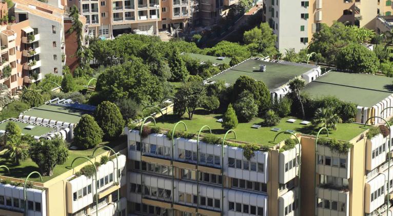 techos verdes mas que estetica una ayuda ambiental